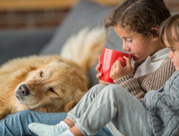 Imagem com duas crianças tomando chocolate quente e um cachorro deitado no sofá