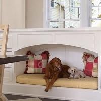 Dia do Cachorro: Decore o cantinho do seu pet
