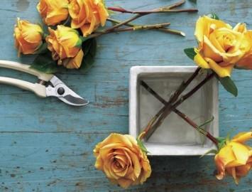 como montar um arranjo de flores_diy