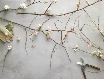 como criar arranjos de inverno com galhos e ramos secos