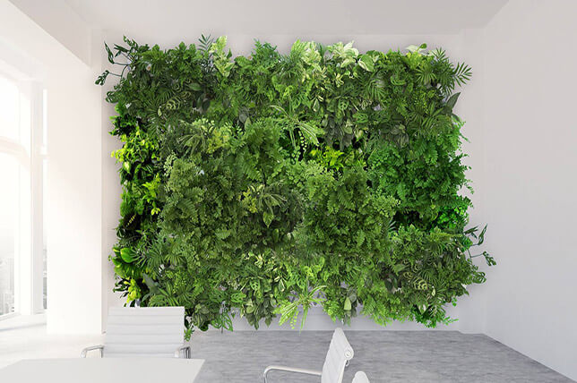 imagem de uma parede com plantas