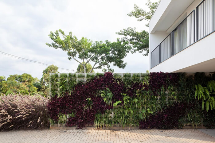 casa de dois andares com muro da garagem com plantas