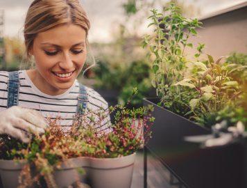 mulher cuidando das plantas em casa