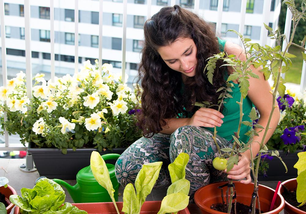 mulher cuidando das plantas na varanda do apartamento