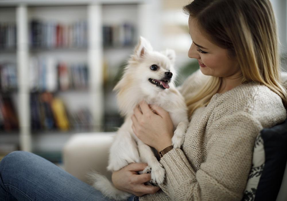 Dona com o seu cachorro no colo.
