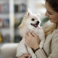 Leis de condomínio: tudo o que você precisa saber