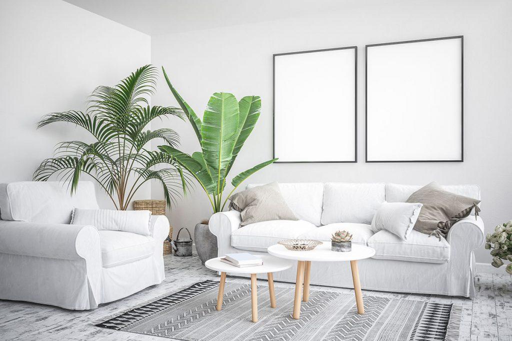 Sala de estar com uma decoração clean e com arvores amonizando o ambiente