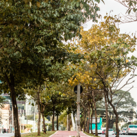6 coisas que só quem mora no Campo Belo em São Paulo entende